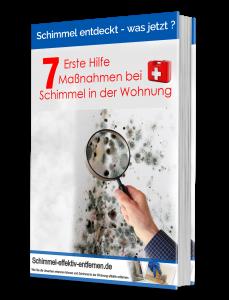 schimmel_ebook-1